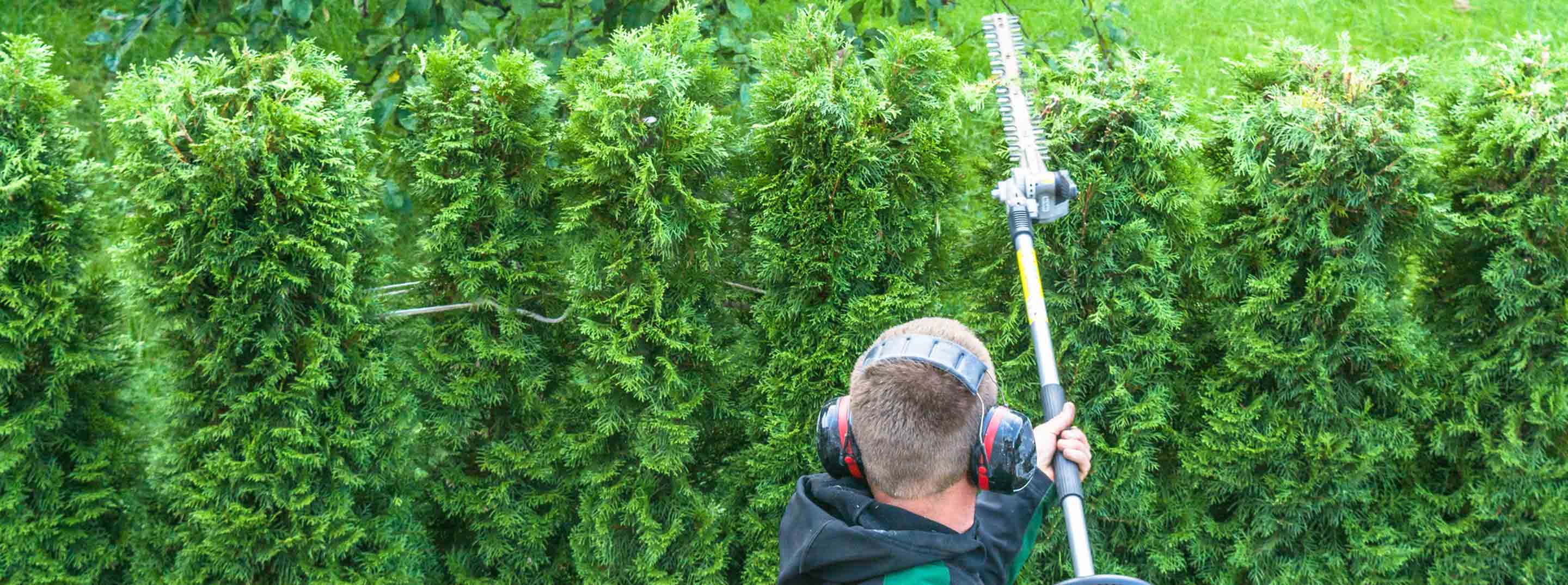 Hedge Services